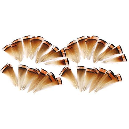 Sharplace 100 Piezas de Plumas de Faisn Naturales 6-8 Cm para Manualidades de Joyera, Sombrerera para Atar Moscas