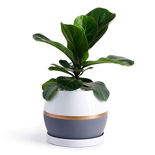 POTEY Ceramic Planter Flower Plant Pot - 5.1
