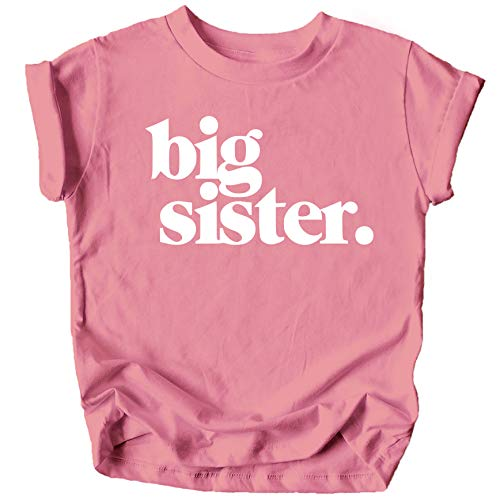 Bold Big Sister Colorful Sibling Reveal Announcement T-Shirt for Baby and Toddler Girls Sibling Outfits Mauve Shirt 4T