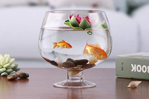 Transparant glazen aquarium - Wijnglas Hoge vaas Home Woonkamer Watercultuur Visglas Aquarium,Waist diameter: 17cm