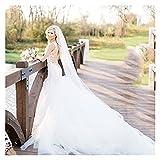 SHOYY Elegante Velo de Novia Classic Soft Bridal Illusion Tuledral Catedral Longitud Velo de Novia con Peine Velo (Color : Black, Item Length : 200cm)