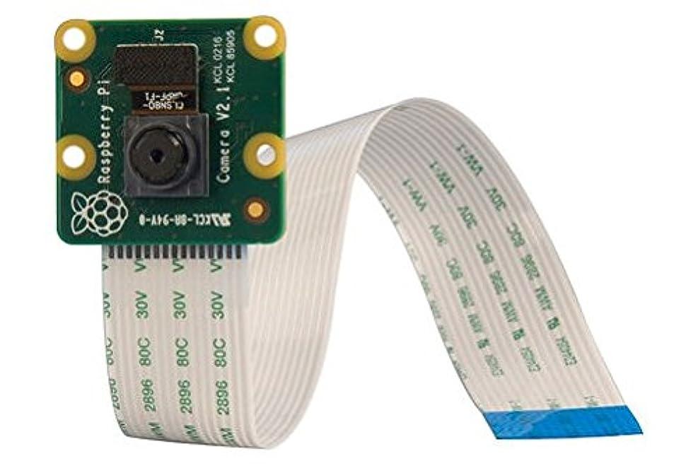 食物ランチ技術者Raspberry Pi 高精細カメラボード Camera Module V2