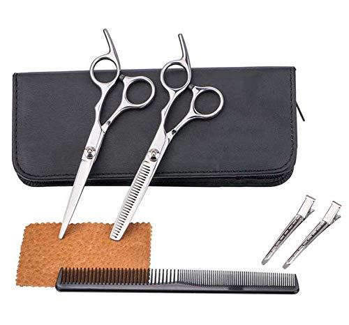HJWL Kappersschaar, 6 stuks, professionele kapper schaarkit voor barbershop styling gereedschap tondeuse schaar haarborstel haarspeld (6 inch)