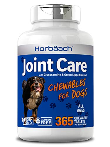 Joint Care for Dogs | 365 Liver Flavour Chewable Tablets | Hip & Joint Health | Glucosamine, MSM, Green Lipped Mussel, Hyaluronic Acid + More | Non-GMO, Joint Aid Supplement for Dogs