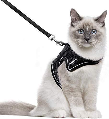 rabbitgoo Katzengeschirr mit Leine Geschirr für Katzen Ausbruchsicher Kaninchengarnitur Welpengeschirr für Kitten Kleine Hunde Chihuahua Katzenweste Verstellbar Schwarz