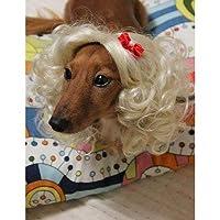 Wigs2you.com オリジナル 動物用 犬 猫 ペットウィッグ かつら コスチューム P-011 S 17.Black