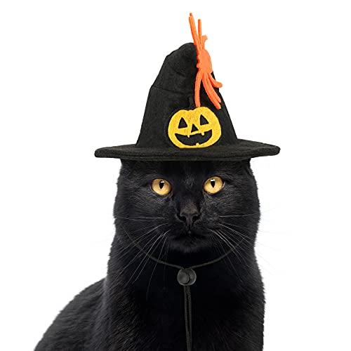 Pawaboo Halloween Katzen Hut, Haustier Kostüme Katze Cosplay Hexenhut mit Kürbis und Spinnenmuster Halloween Dekoration Einstellbare Haustier Kopfbedeckungen für Kätzchen Haustier Party, Klein