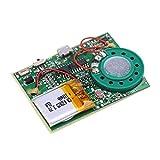 Zerone Re-recordable USB Musik Ton Sprachaufnahme Spieler Chip Modul 1W Aufladbarer Lithium Batterie...