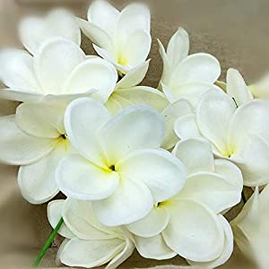 ShineBear Natural Real Touch Artificial Not Silk White Frangipani Plumerias Artificial Flower Heads for Cake Decoration Wedding Bouquets – (Color: White)