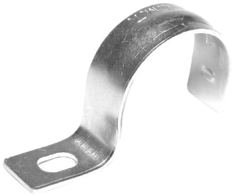 盗難想像力豊かな死ぬL.H. Dottie TW75 Conduit Strap, 1 Hole, 3/4-Inch, Zinc Plated, 100-Pack by L.H. Dottie [並行輸入品]