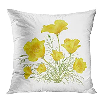 Suklly Romantic Square Green Yellow California Poppy Watercolor Painting Hidden Zipper Home Sofa Decorative Throw Pillow Cover Cushion Case 18x18 Inch Two Sides Design Printed Pillowcase