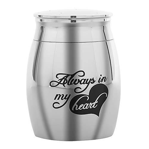 Pvnoocy Urnas de cremación, de acero inoxidable, mini urna de recuerdo para cenizas humanas, urnas funerarias para cenizas humanas de mascotas