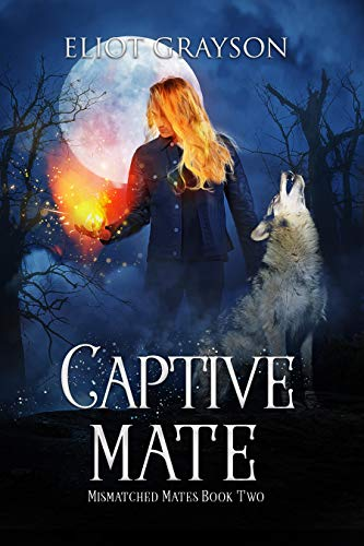 Captive Mate (Mismatched Mates Book 2)