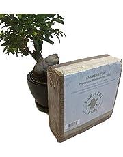 FARMERS FUN Sustrato de humus, ladrillo de humus, tierra de coco, 5 kg para 70 l de sustrato, sin turba, pequeño y compacto, sin deslizamientos.