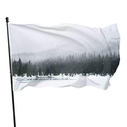 BI HomeDecor Garden Flag,Winter Snow Scene Landscape Yard Flags, Auffällige Hausflaggen-Banner Für Die Begrüßungsdekoration,90X150CM