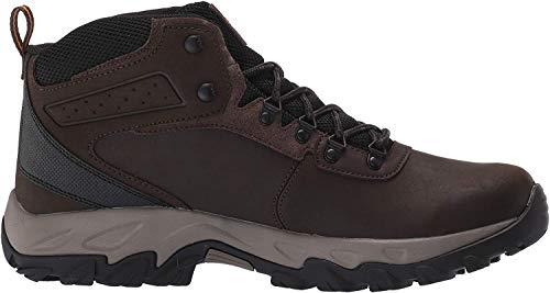 Columbia Men's Newton Ridge Plus II Waterproof Hiking Boot, Cordovan, Squash, 8 Regular US