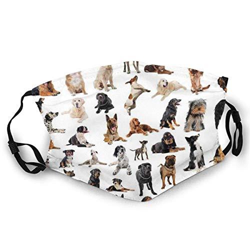 TABUE Face Guard Mond Cover Samengestelde Beeld Met Purebred Honden Australische Sheepdog Belgische Boxer Italiaanse Mastiff Pedigree Ski Hoed Hals Gaiter
