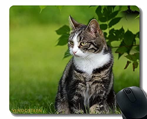 Almohadilla de ratón de Goma Antideslizante, Gato Hocello de Hierba Subida 51629 Cómoda Estera de ratón para Juegos y Oficina