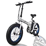 ECOTRIC Fat Tire Folding Electric Bike 36V 12Ah Removable Lithium Battery Beach Snow Bicycle 20' Ebike 500W Electric Moped Electric...