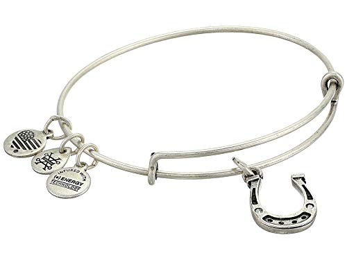 Alex and Ani Horseshoe Bangle Bracelet Rafaelian Silver One Size