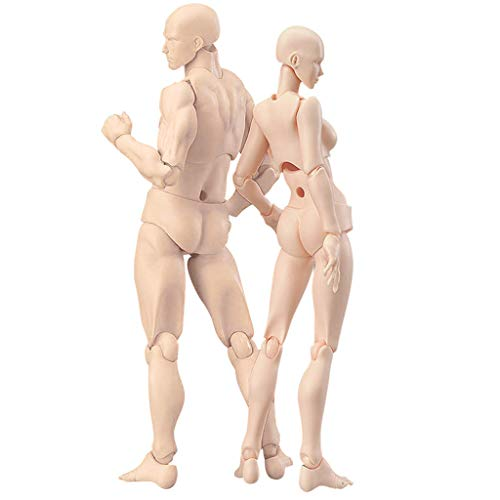 Body Kun Doll,BYIA Artists Manikin Blockhead Jointed Mannequin Drawing Figures for Figure Model Male+Female Set (Skin Colored Version)