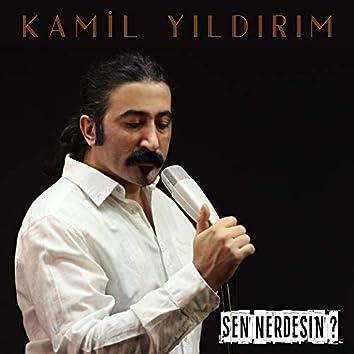 Sen Nerdesin (feat. Hüseyin Karakuş)
