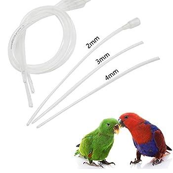 WAZA Lot de 50 ml seringues d'alimentation pour oiseaux avec 3 tubes d'aiguilles de différentes tailles Traitement d'injecteur d'urgence pour oiseaux