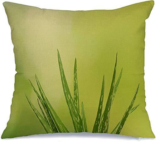 Throw Pillowcase Aloe Vitality Vera Plant Natural Remedy Product Beauty Healing Fashion Healthcare Medical Herbal Cushion Cover 45 X 45CM