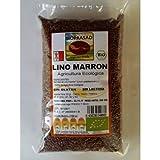 Bioprasad - Semillas Lino Marron Bio 500 Gramos - Sin Gluten Sin Lactosa - Procedente De Agricultura Ecológica