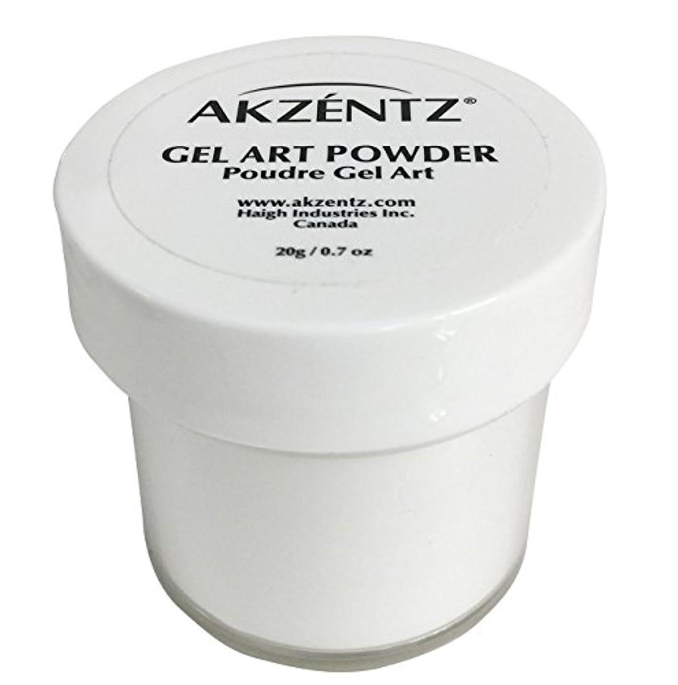 画家忘れっぽい排泄するAKZENTZ(アクセンツ) ジェルアートパウダー 20g
