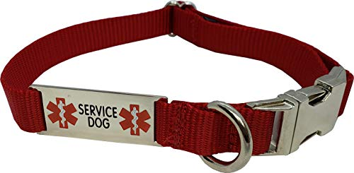 Activedogs Service Dog Collar W/Chrome Service Dog ID Tag (14' - 20', Red)