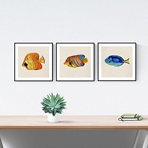 Nacnic Pack de láminas para enmarcar Tres Peces. Posters Cuadrados con imágenes de Peces. Decoración de hogar. Láminas para enmarcar. Papel 250 Gramos