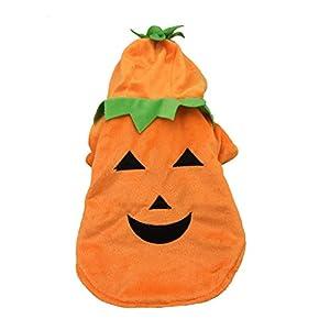 Costumes Hoodie Manteau d'Halloween Citrouille pour Chien Chat Animaux de Compagnie