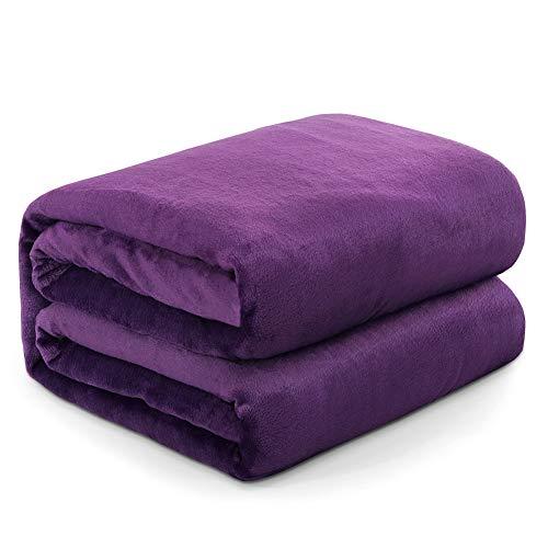 RATEL Mantas para Cama Púrpura 200 × 230 cm, Mantas para Sofa de Franela Reversible, Mantas Ligeras de 100% Microfibra - Fácil De Limpiar - Extra Suave Cálido
