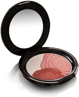 Shiseido Camellia Compact Limited Edition