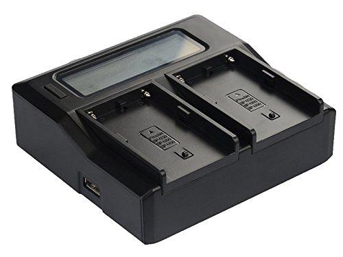 Quick LCD-Screen - Cargador para Sony BP-U30, BP-U60, BP-U90, PMW100, PMW150, PMW160,...
