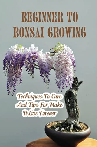 Beginner To Bonsai Growing: Techniques To Care And Tips For Make It Live Forever: What Kind Of Compost Needed For Bonsai