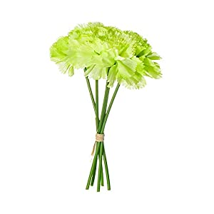 Artificial and Dried Flower Artificial Flowers 5 Heads Silk Flowers Carnation Bouquet Wedding Home Decoration Fake Flowers Mother's Day- ( Color: Green )