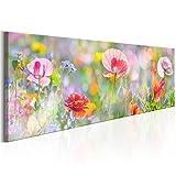 decomonkey Bilder Blumen Mohnblumen 120x40 cm 1 Teilig
