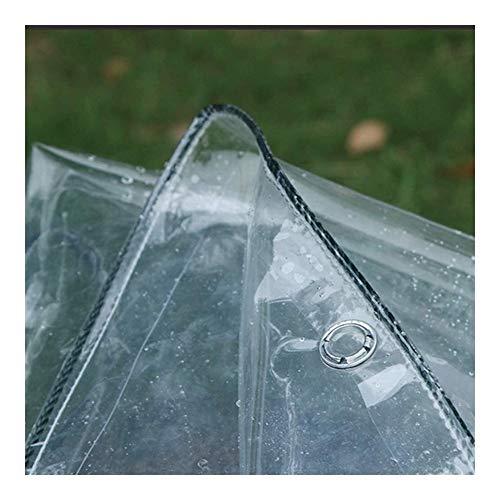 XWZH Lona universal para invernadero transparente, 2,4 x 4, de polietileno, transparente, de PVC, plástico, transparente, de vinilo, color transparente, tamaño: 2 x 3 m.