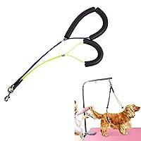 魔法の犬グルーミングテーブルロープのグルーミングロープロープ、犬用ボディヌースホルダー拘束ロープハーネス、猫のグルーミングスタンディングトレーニング、耐久性のある防水、耐食性
