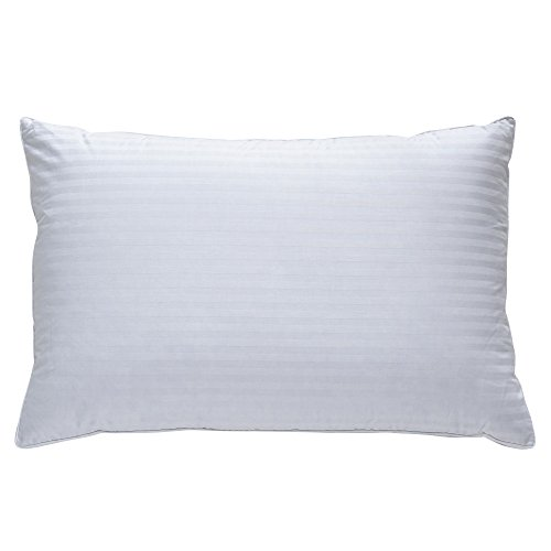 Classic Brands Plush Down Pillow | Best Pillow for Back, Side, and Stomach Sleepers, King, White