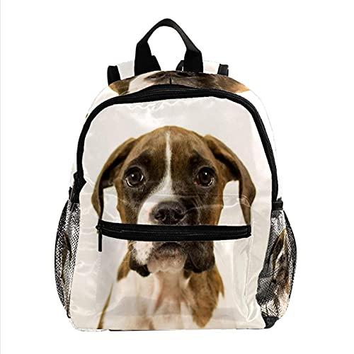 RuppertTextile Zaino per adolescenti e ragazzi Utility Daypack Walk Travel Bag cucciolo di cane carino pugile con il pacchetto della bottiglia d'acqua