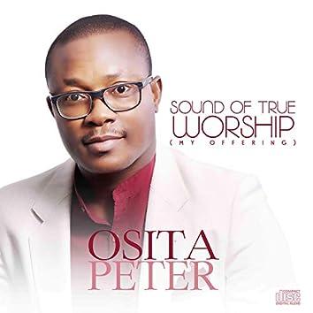 Sound of True Worship (My Offering)