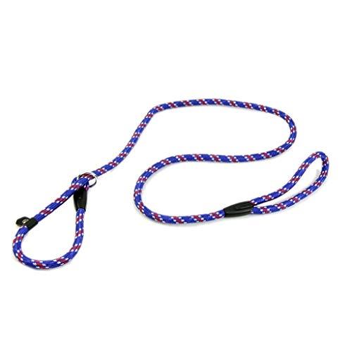 LANGING Hundeleine Pet Chain Cesar Millan Leine und Halsband Stil 140cm Flüsterer Slip Training Korrektur