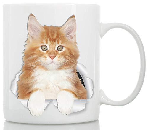 Taza de café de cerámica de Maine Coon Kitty Cat – Taza de café de Maine Coon de Maine Coon Kitty Cat Gifts – Divertida taza de café para los amantes de los gatos