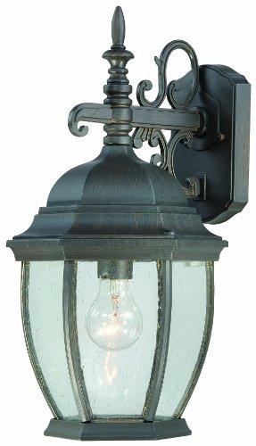 Thomas Lighting SL922963 Covington Outdoor Wall Lantern, Painted Bronze