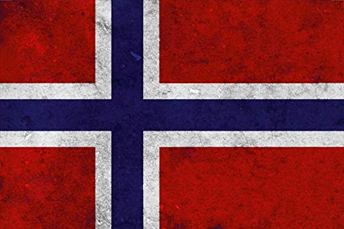 FS land vlag Noorwegen nationale vlag metalen bord bordje gewelfd metaal sign 20 x 30 cm