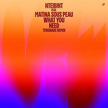 What You Need (Tensnake Remix)