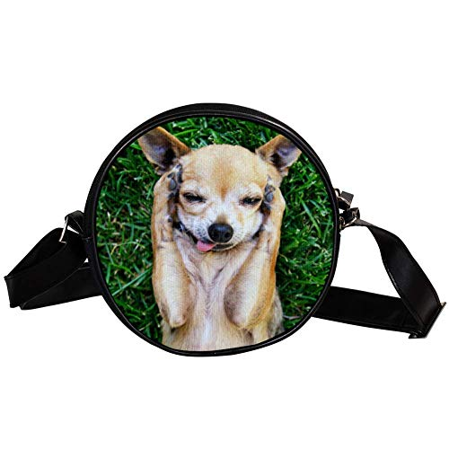 Bennigiry Cute Chihuahua With His Paws On His Head Damen Runde Umhängetasche Top Handtasche
